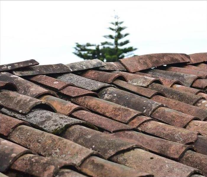 Close up image of roof shingles