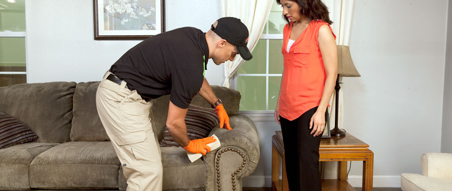 Tarrytown, NY carpet upholstery cleaning