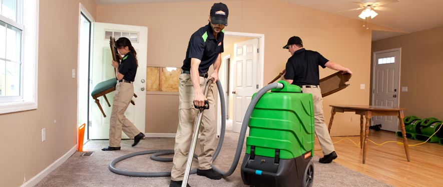 Tarrytown, NY cleaning services